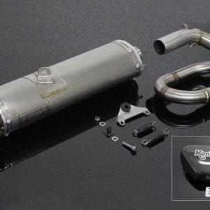 """TYGA Auspuffanlage """"Under Belly"""" mit langem Endschalldämpfer + Carbon Seitendeckel, Honda Monkey 125 2018"""